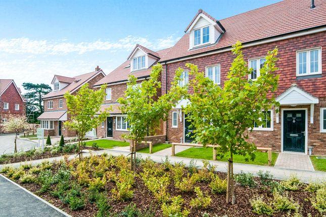 Thumbnail Link-detached house for sale in Arlington Road East, Hailsham