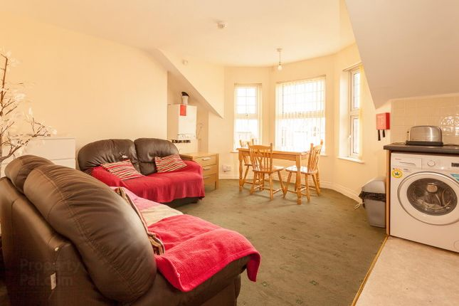 Thumbnail Flat to rent in Unit C, 100 Malone Avenue, South Belfast
