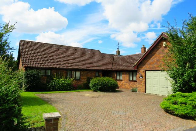 Thumbnail Bungalow to rent in Boundary Road, Hockwold, Thetford