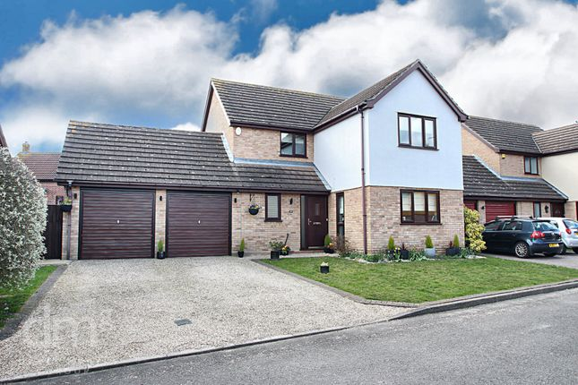 Thumbnail Detached house for sale in Bullfinch Close, Colchester, Essex