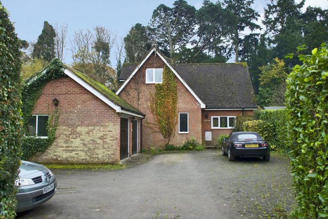 Thumbnail Detached house to rent in Burley, Hampshire