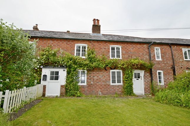 Thumbnail Property to rent in Jenny Lake Row, The Street, South Harting, Petersfield