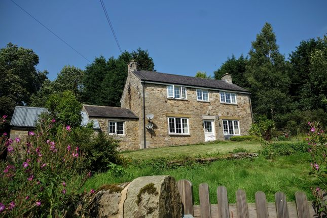 Thumbnail Detached house to rent in The Croft, Gunnerton, Hexham, Northumberland
