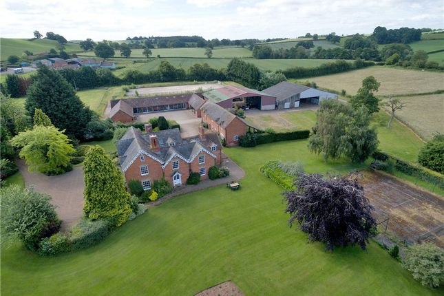 Thumbnail Detached house for sale in Collington, Bromyard