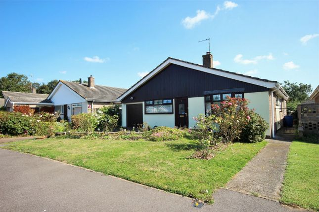 Thumbnail Detached bungalow for sale in Sweet Briar Road, Stanway, Colchester, Essex