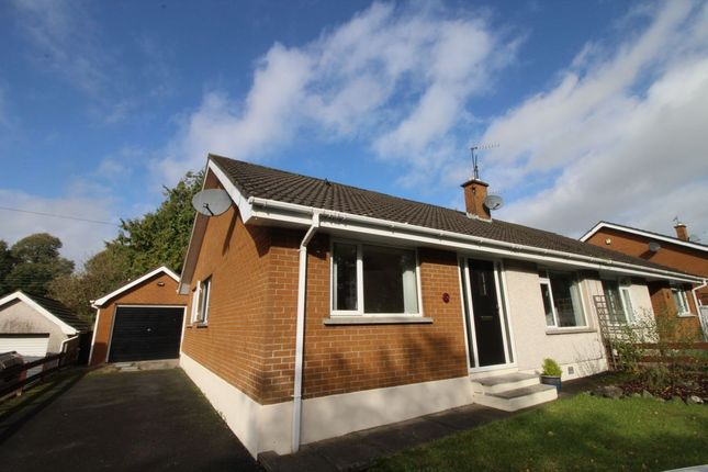 Thumbnail Bungalow for sale in Portmore Avenue, Ballinderry Upper, Lisburn