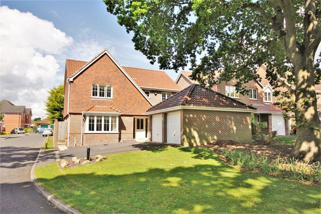 Thumbnail Detached house for sale in Stillmeadows, Locks Heath, Southampton