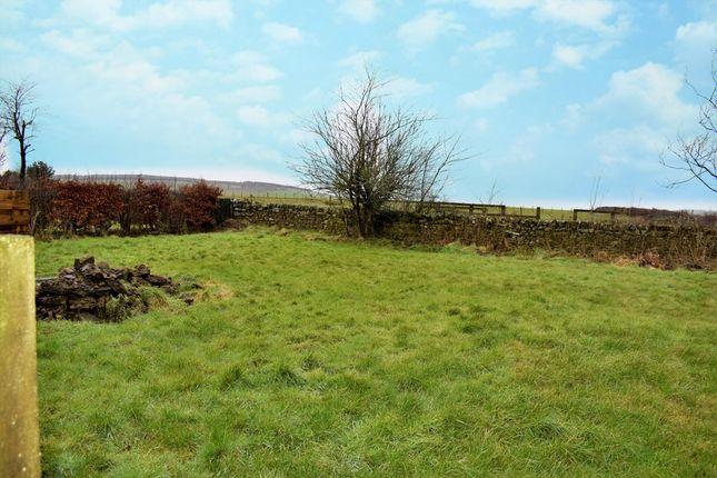 Lawn Area (Copy) of Douglas House, Eaglesfield, Dumfries & Galloway DG11
