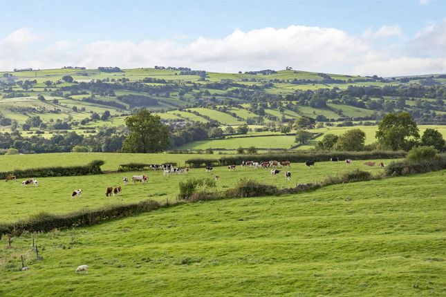 Thumbnail Property for sale in Bryn Hall Farm, Bradbourne, Derbyshire