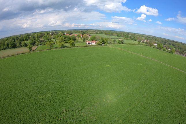 Kettle Green Lane, Much Hadham, Hertfordshire SG10