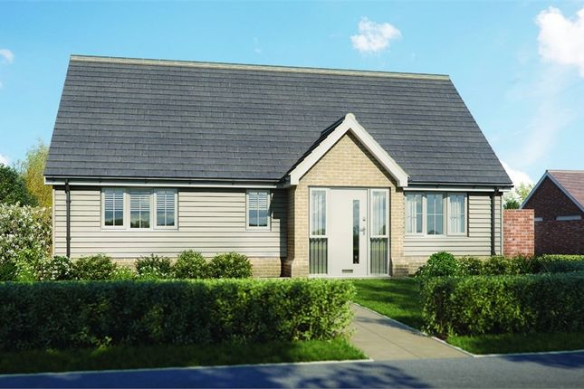 Thumbnail Detached bungalow for sale in Plot 'old Stables', Walton Road, Kirby-Le-Soken, Frinton-On-Sea