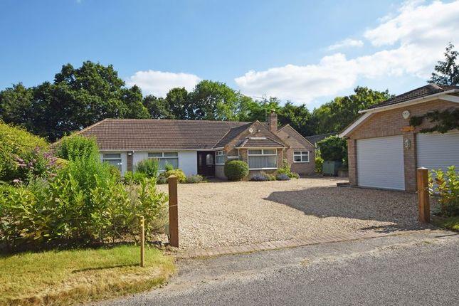 Thumbnail Detached bungalow for sale in Isington Road, Isington, Alton, Hampshire