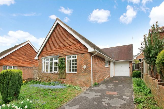 The Chase, Findon, Worthing BN14
