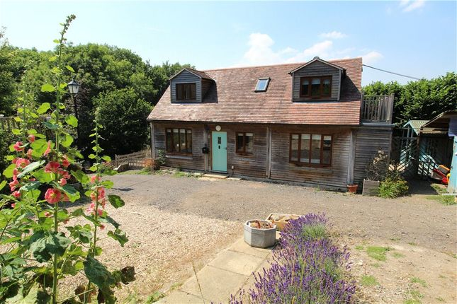 Thumbnail Detached house to rent in Quarry Lane, Bridport