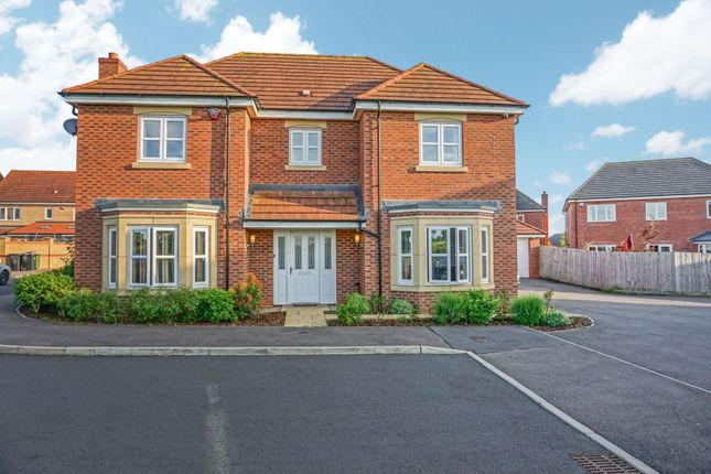 Thumbnail Detached house for sale in Holly Close, Great Glen, Leicester