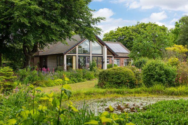 Detached bungalow for sale in West Calder, West Lothian