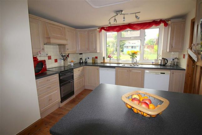 Thumbnail Semi-detached house for sale in New Dixton Road, Monmouth