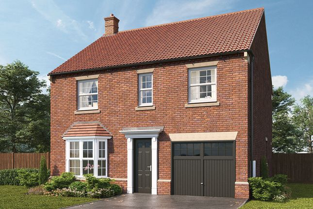 "Thumbnail Detached house for sale in ""Barrington"" at Harrogate Road, Green Hammerton, York"