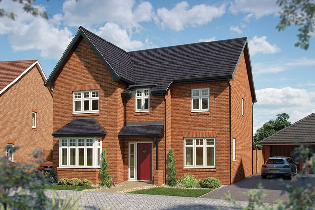 """Thumbnail Detached house for sale in """"The Birch"""" at Towcester Road, Silverstone, Towcester"""