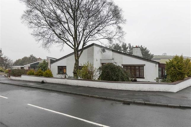 Thumbnail Detached bungalow for sale in The Drumlins, Ballynahinch, Down