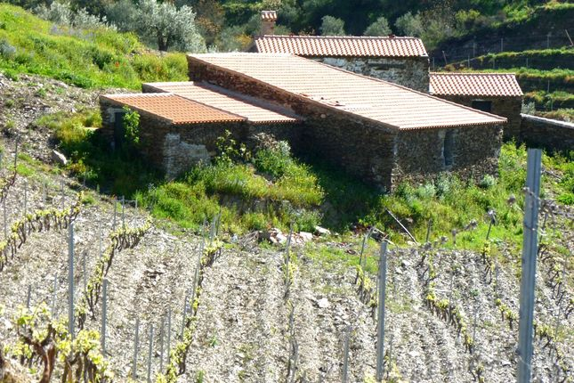 3 bed farmhouse for sale in Douro, Guarda, Central Portugal