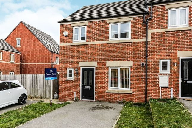 Thumbnail Terraced house to rent in Robinson Avenue, Sheffield