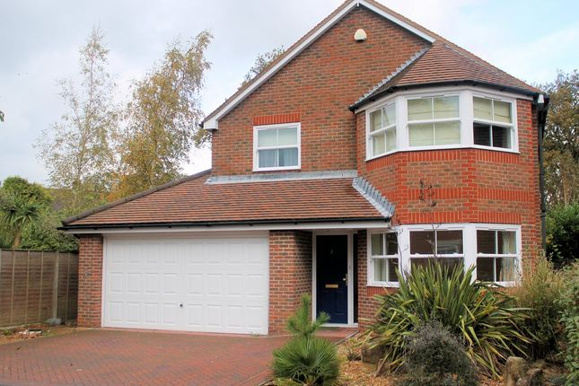 Thumbnail Detached house to rent in Catisfield Road, Fareham