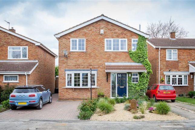 Thumbnail Detached house for sale in Crosslands, Caddington, Bedfordshire