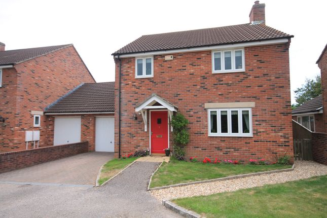 Thumbnail Link-detached house for sale in Knighton Lane, West Knighton, Dorchester