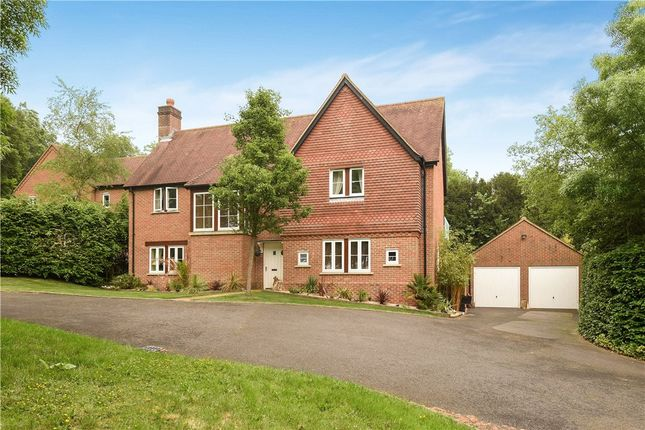 Thumbnail Detached house for sale in Poplar Drive, Charlton Down, Dorchester