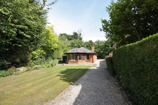 Thumbnail Detached bungalow for sale in The Ridge, Little Baddow, Chelmsford