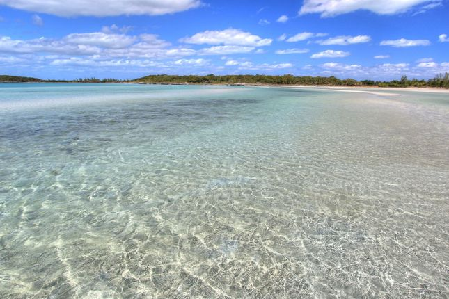 Land for sale in North Abaco, The Bahamas