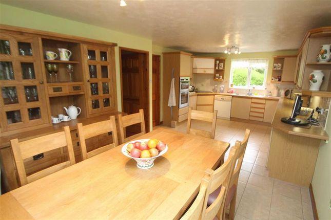 Kitchen/Diner of Llwyn Y Garth, Llanfyllin SY22