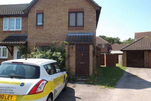 Thumbnail Property to rent in Langdale Drive, Colchester, Essex