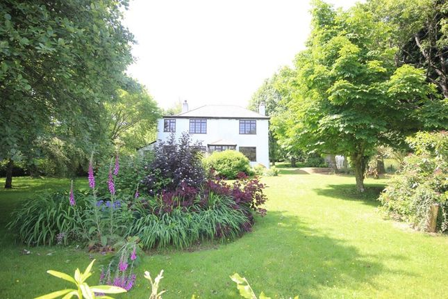 Thumbnail Detached house for sale in Manaton, Newton Abbot