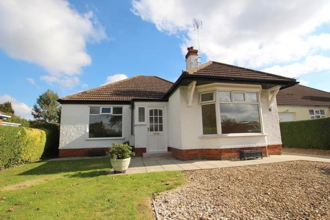 Thumbnail Detached bungalow to rent in Lincoln Road, Northborough