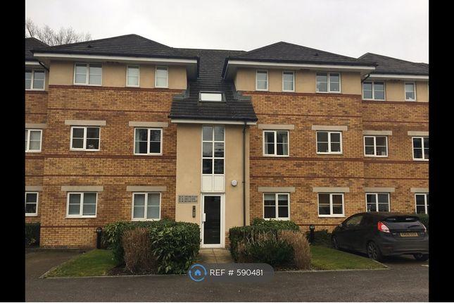 Thumbnail Flat to rent in Rushmere Court, Hemel Hempstead