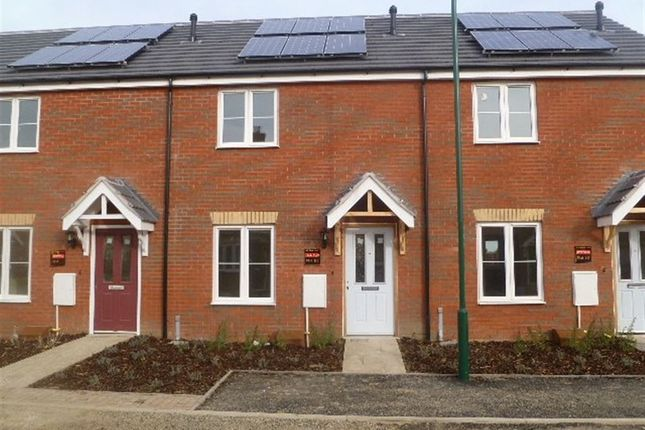 Thumbnail Property to rent in Whitby Avenue, Eye, Peterborough