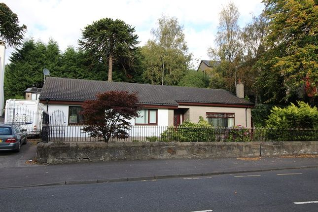 Thumbnail Detached bungalow for sale in Vrede, Westburn Avenue, Falkirk