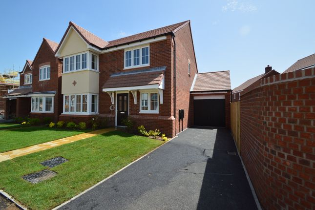 4 bed detached house to rent in Pewit Close, Bowbrook Meadows, Shrewsbury SY5