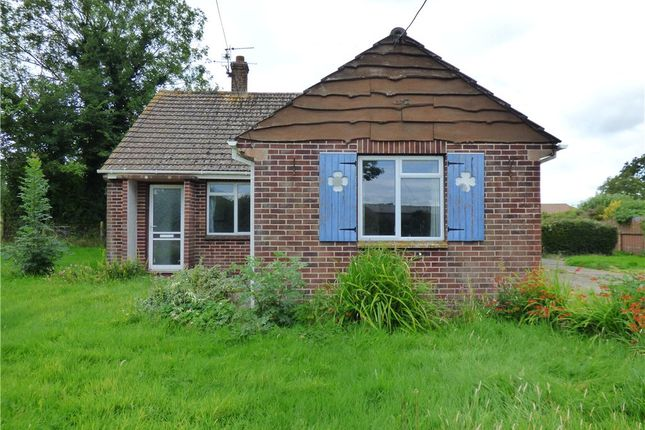 Thumbnail Detached bungalow for sale in Leigh, Sherborne