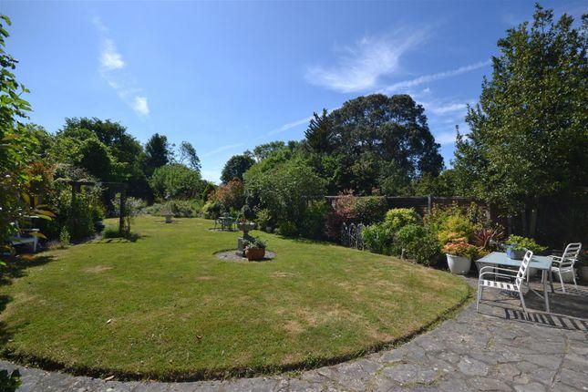 Garden of Chestnut Avenue, Ewell, Epsom KT19