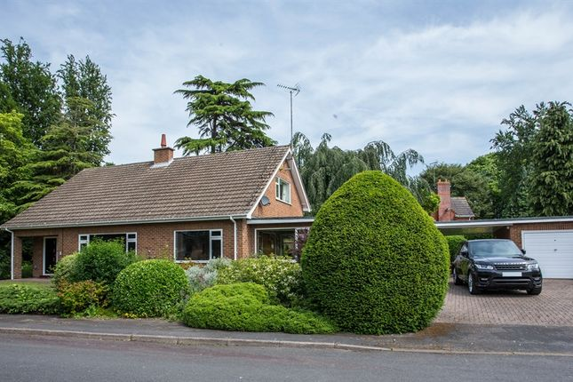 Thumbnail Bungalow for sale in Beechfield Gardens, Spalding
