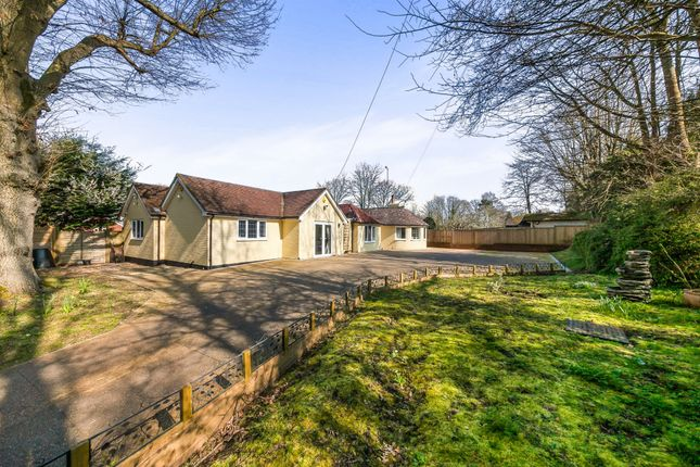 Thumbnail Detached bungalow for sale in Beacon Road, Ditchling, Hassocks