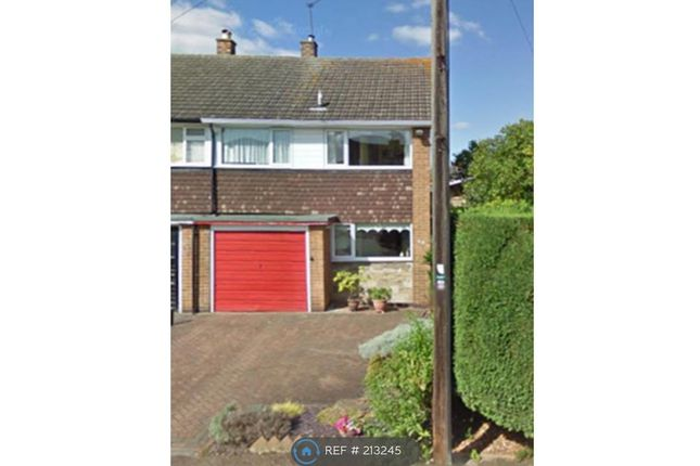 Thumbnail Semi-detached house to rent in Belmont Avenue, Derby