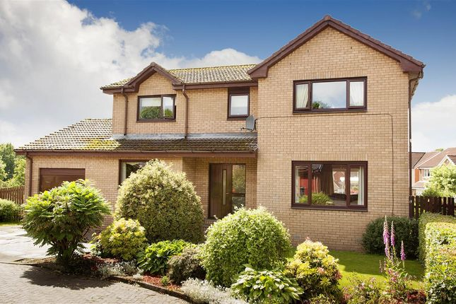 Thumbnail Property for sale in Hunter Grove, Bathgate