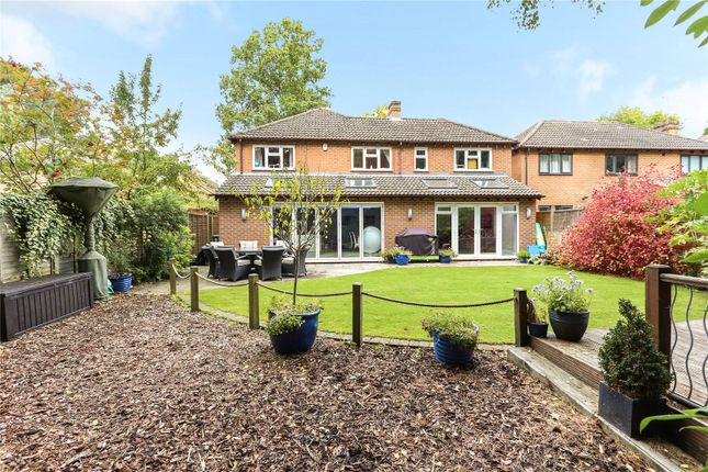 Thumbnail Detached house for sale in Silverdale, Fleet