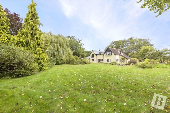 Thumbnail Detached house for sale in Kelvedon Road, Wickham Bishops, Witham, Essex