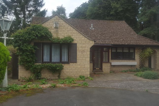 Thumbnail Bungalow to rent in Stanhope Avenue, Woodhall Spa