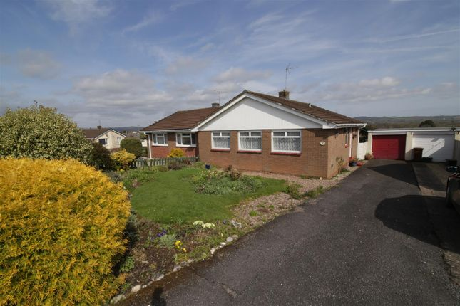 Thumbnail Semi-detached bungalow to rent in Francis Crescent, Tiverton